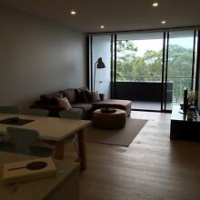 Flat mate wanted Lane Cove Lane Cove Area Preview
