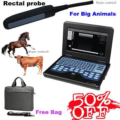 Cms600p2 Vet Veterinary Ultrasound Scanner Machinerectal Probehot Sale