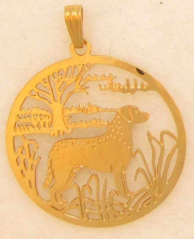 Chesapeake Bay Retriever Jewelry Gold Pendant by Touchstone