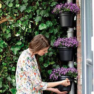 elho green basics regenrohr pflanzgef blumentopf blumenkasten ebay. Black Bedroom Furniture Sets. Home Design Ideas