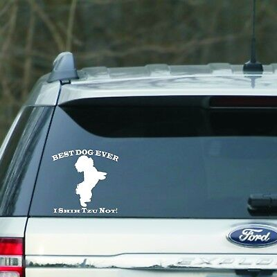 Best dog ever I Shih Tzu Not  Car Window, laptop Vinyl Decal Sticker 5.5