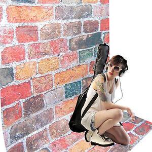 Fond Tissu Studio Photo Video DynaSun RMS70 Motif Bricks - France - État : Neuf: Objet neuf et intact, n'ayant jamais servi, non ouvert, vendu dans son emballage d'origine (lorsqu'il y en a un). L'emballage doit tre le mme que celui de l'objet vendu en magasin, sauf si l'objet a été emballé par le fabricant d - France