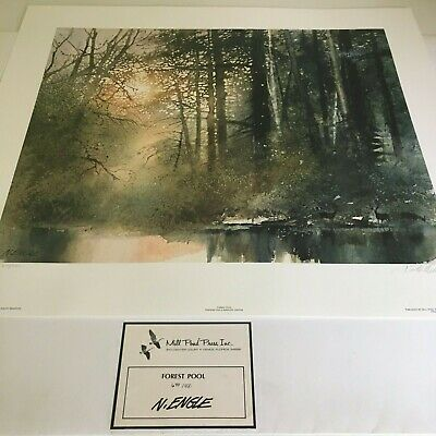 Forest Pool-Limited Edition Print-Nita Engle Pond Limited Edition