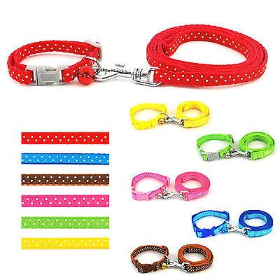Hundehalsband Halsband Welpenhalsband mit Leine Welpe Hunde Welpengeschirr Hund