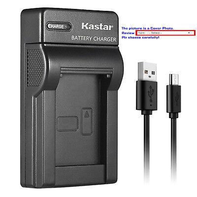 Kastar Battery Slim Charger for Panasonic CGR-DU14 CGA-DU14 & PV-GS200 PV-GS250 Cga Du14 Lithium Ion Battery