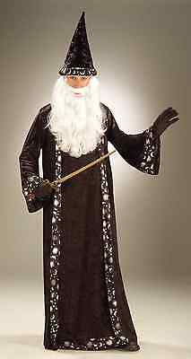 OH MR WIZARD RENAISSANCE MEDIEVAL MERLIN THE MAGICIAN ADULT MENS MALE COSTUME](Male Medieval Costumes)