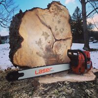 Tree service / tree removal / pruning.