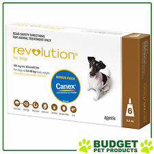 REVOLUTION For Dogs 5.1-10kg Brown 6 Pack With Canex