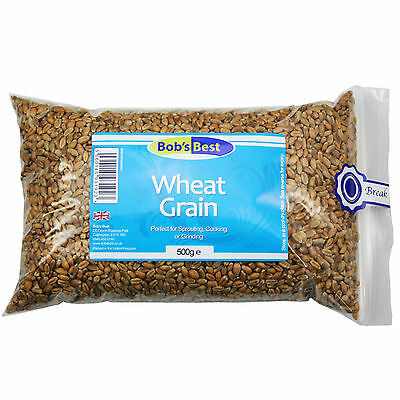 Wheat Grain - 500g - Natural Seeds by Bob's Best - for Sprouting,