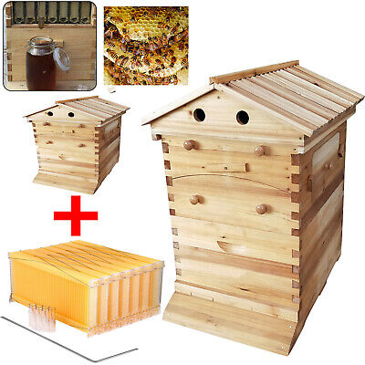 7pcs Auto Honey Hive Beehive Frames Beekeeping Wooden House Beehive Boxes