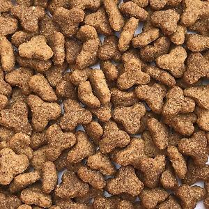 15Kg Complete Ferret & Hedgehog Food promotes wellbeing and essential nutrition