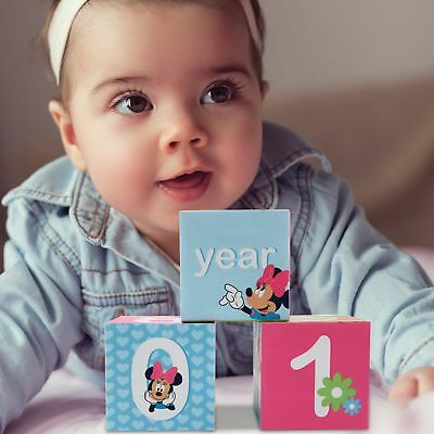 Disney Minnie Mouse Milestone Photo Sharing Age Blocks  Baby Girls  Age 0 24M