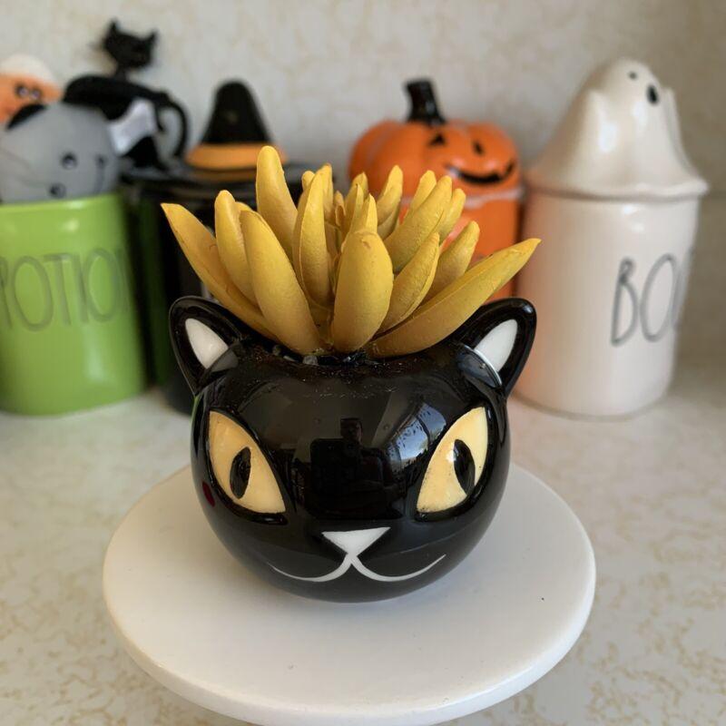 HYDE EEK TARGET HALLOWEEN DECOR CERAMIC BLACK CAT SUCCULENT PLANT