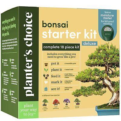 Bonsai Tree Growing Kit - Grow 4 Indoor Bonsai Trees - Plant a Garden from Se...