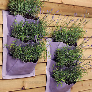 2 x 3 pocket burgon lavender verti plant vertical garden wall planters ebay