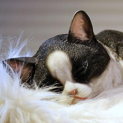 Eine wünderschön gestaltete naturnahe Katzenfigur aus Polyresin