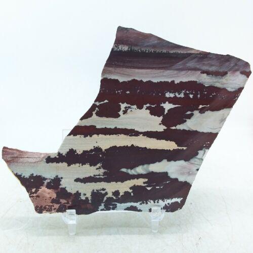 Mimbres Apache Rhyolite, slab, cabbing rough, lapidary, gemstone, #R-3357