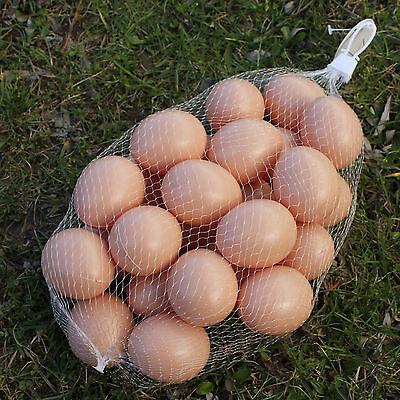 25 Hohlkörper Plastikeier als Osterdeko oder Nestei für Hühner Ostereier Osterei