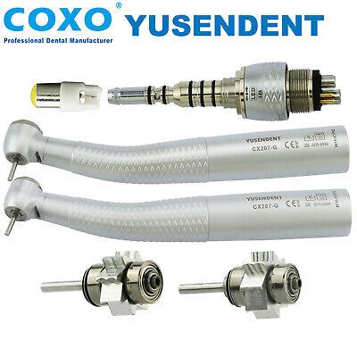 Coxo Dental Fiber Optic High Speed Handpiece 6 Hole Kavo Multiflex Led Coupling