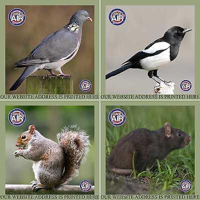 100 CARD PAPER 14CM COLOUR ANIMAL MIX AIR RIFLE GUN SHOOTING PRACTISE TARGETS - Paper Animal Targets