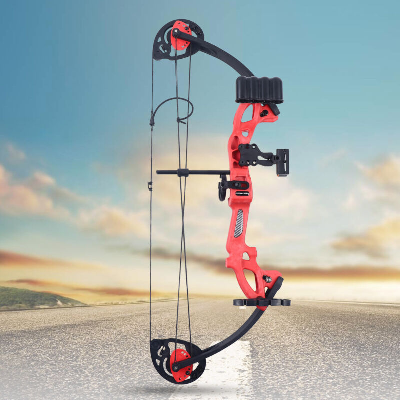 12-40lbs Mini Compound Bow Set Arrow Bowfishing Hunting Archery Right Left Hand