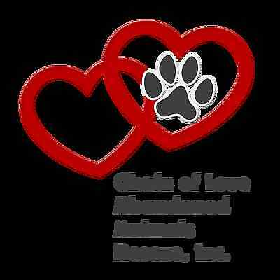Chain of Love Abandoned Animals Rescue Inc