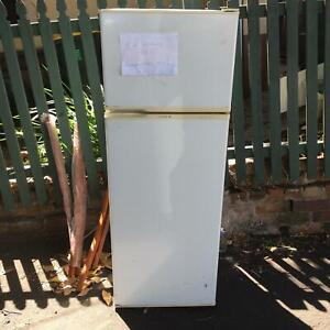 Free working fridge Camperdown