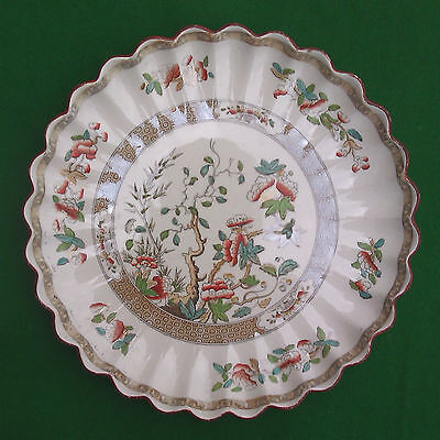 """8.5"""" COPELAND INDIAN TREE FLUTED EDGE PLATE 1847 - 1867"""
