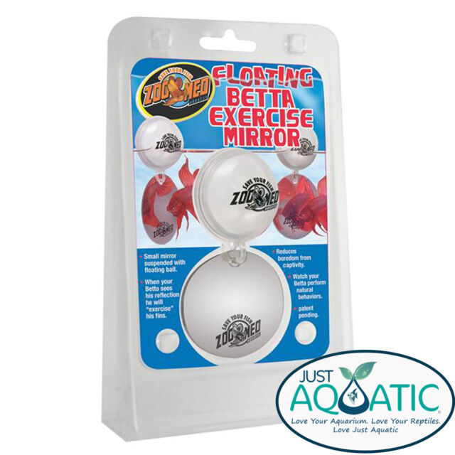 ZOO MED Floating Betta Fighting Fish Exercise Mirror Fins Training Recommended