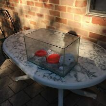 Glass enclosure 400x230 Mundaring Mundaring Area Preview