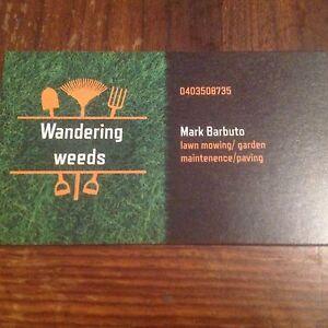 Wandering weeds Sunshine Brimbank Area Preview