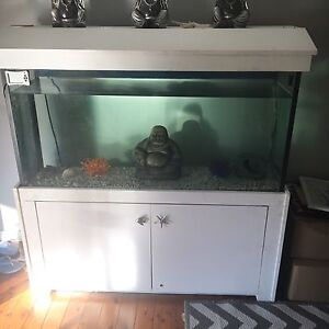 Large fish tank Silverdale Wollondilly Area Preview
