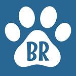 Beast Row - Handmade Pet Bandanas