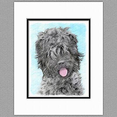 Black Russian Terrier Dog Original Art Print 8x10 Matted to - Black Russian Terrier Dogs