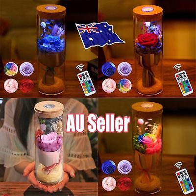 Bloom LED Rose Bottle Lamp Flower Bottle Light w/ Remote Control Night Light NW