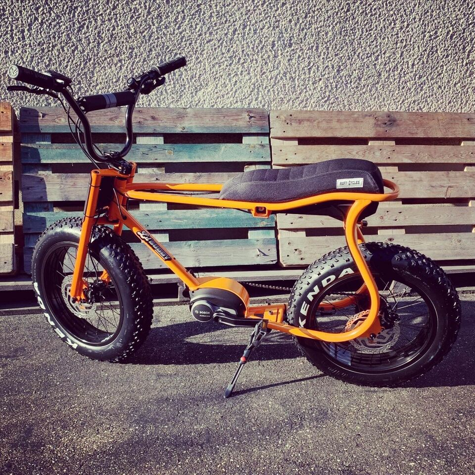 RUFF CYCLES Lil Buddy e-Bike BOSCH Bonanza in Rudersberg