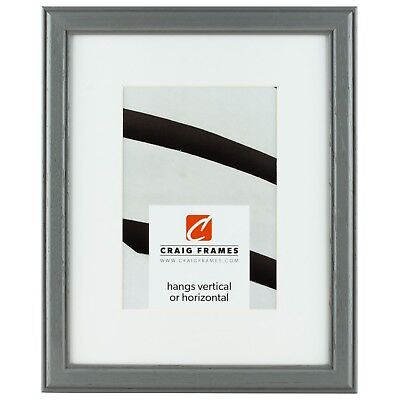 """Craig Frames 12x18"""" Gray Picture Frame, White Mat with Openi"""