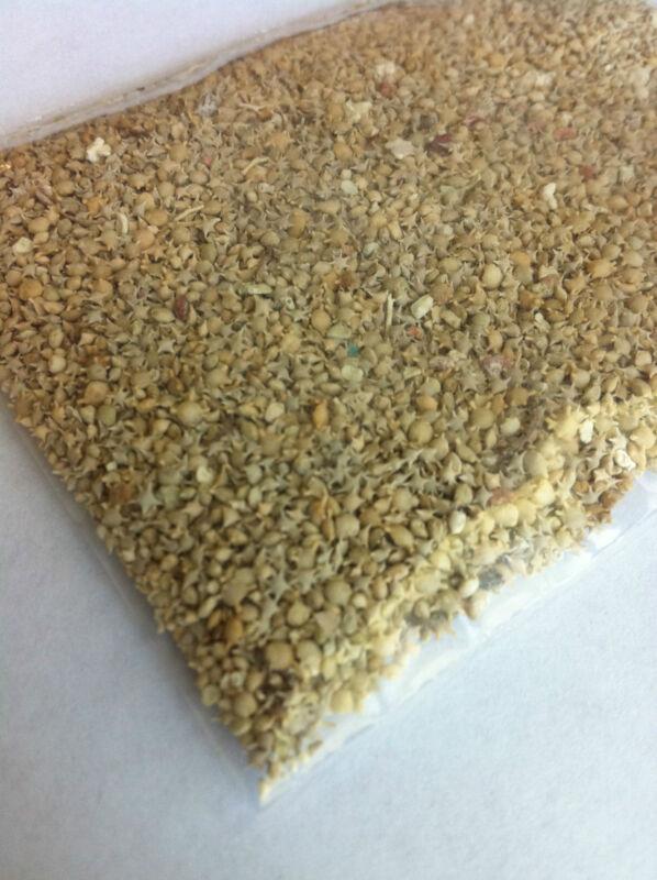 Star sand from Taketomi, Japan - Rare - 30ml