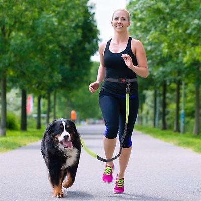 Hands Free Dog Leash Waist Belt Pouch Retractable Lead Walking Running Hiking