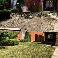 Re-sodding. Grass Cutting. Yard clean ups. Tree removal. Durham