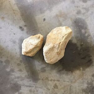 Rock for free Morisset Lake Macquarie Area Preview