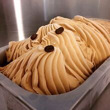 Gelato Ice Cream Shop Cafe profitable Brisbane City Brisbane North West Preview
