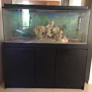 4 FOOT FISH TANK WITH CABINET Cherrybrook Hornsby Area Preview