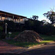 Free mixed wood mulch Frenchs Forest Warringah Area Preview