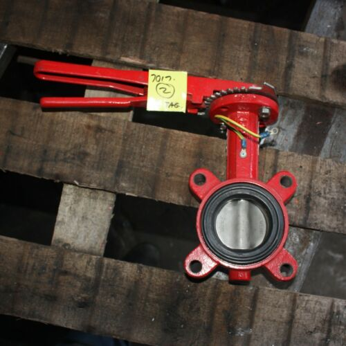 """BRAY CONTROLS 2.5"""" 2 1/2 inch DN65 65mm  Lugged Butterfly Valve with lever"""