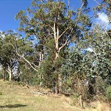 """Private """"national"""" park in Strzelecki Ranges Jeeralang Junction Latrobe Valley Preview"""