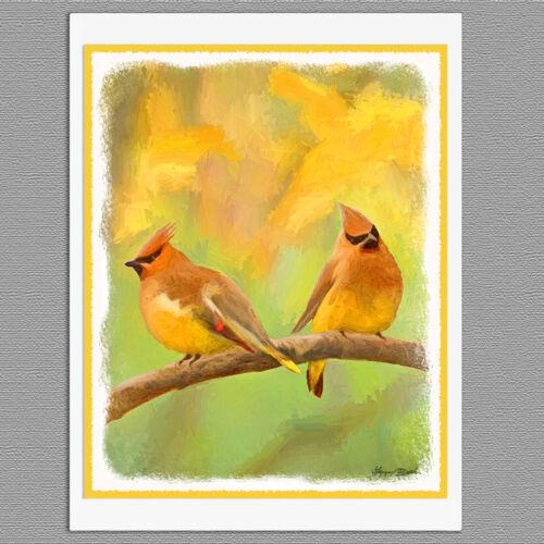 6 Cedar Waxwing Wild Bird Blank Art Note Greeting Cards