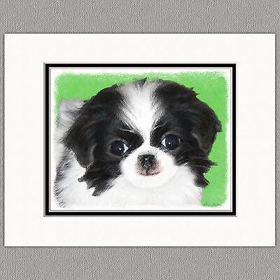 Japanese Chin Puppy Original Art Print 8x10 Matted to 11x14