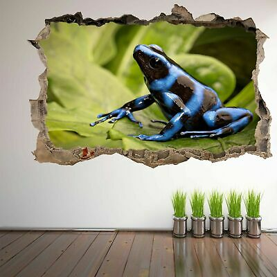 Poison Dart Frog Rainforest Animal Wall Art Stickers Mural Decal Home Decor FA1