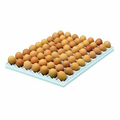 Egg Setter Tray - Chicken - 80 Egg Durable Incubation Hatcheries